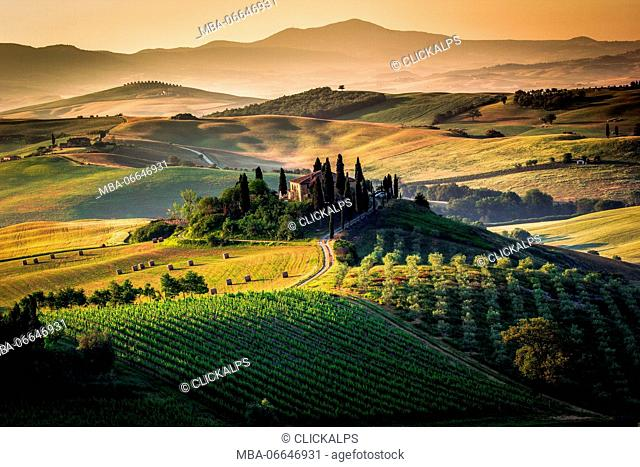 Val d'Orcia, Tuscany, Italy. Amazing sunrise over the green and golden hills of the Tuscan landscape