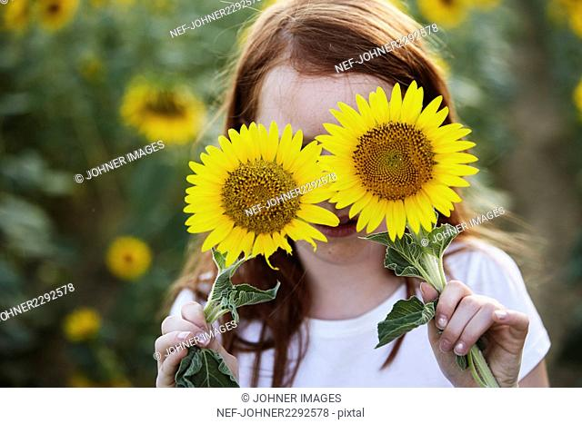 Girl hiding behind sunflowers