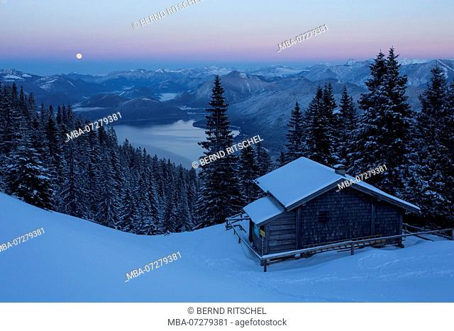 View from Simetsberg to the Walchensee / Lake Walchen, Bavarian Alps, Upper Bavaria, Bavaria, Germany