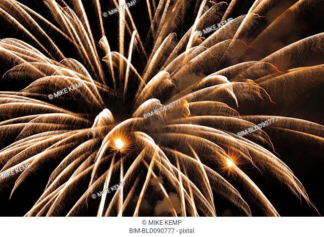 Fireworks exploding in sky