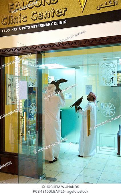 Dubai, falcons at teh falcon clinic