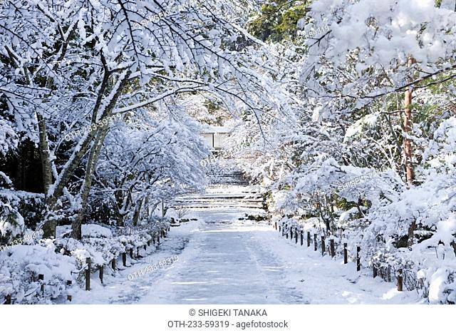 Approach to Nison-in temple in Winter, Kyoto, Sagano, Japan