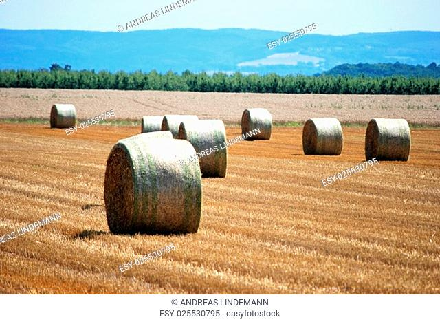 autumn is here, the hay is retracted
