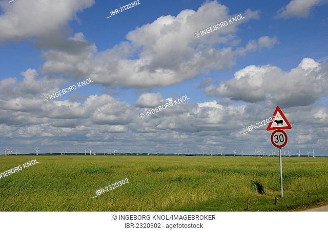 Traffic sign, dam of Hamburger Hallig, North Frisia, Schleswig-Holstein, Germany, Europe