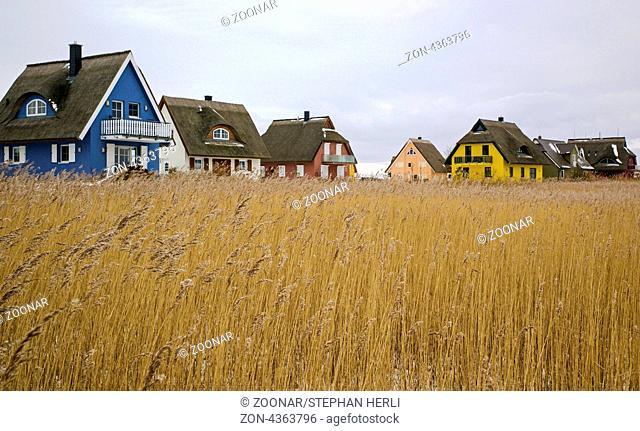 Ruegen in winter - holiday houses of Vieregge