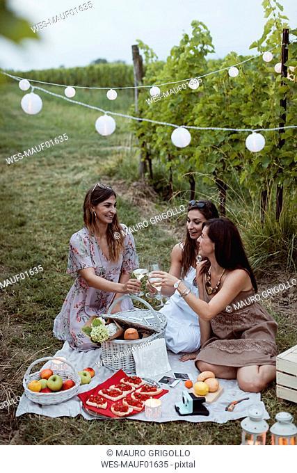 Friends having a summer picnic in vineyard