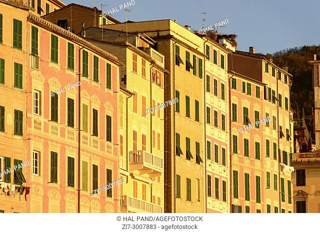 colorful picturesque historical traditional facades on village sea front, shot on a sunny winter day, Camogli, Italy