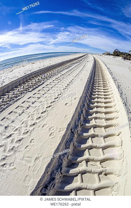 Heavy machinery tracks in sand on St George Island in the panhandle or forgotten coast area of Florida in the United States