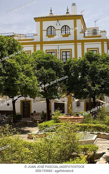 Square of Doña Elvira, Santa Cruz district, Sevilla. Andalucia, Spain