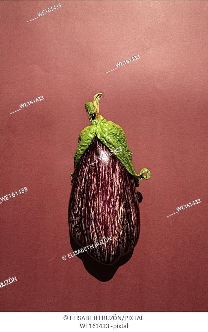 Eggplant with white fur on white background