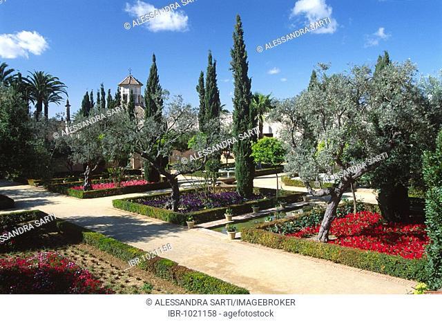 Gardens in Alcazar, Jerez de la Frontera, Andalusia, Spain, Europe