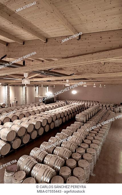 Barrels in the Emilio Moro wine cellars of the denomination Ribera del Duero in Valladolid Spain Europe