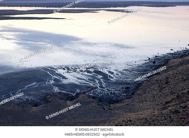 Kenya, Rift Valley, Magadi Lake, lesser flamingoes at dawn (aerial view)