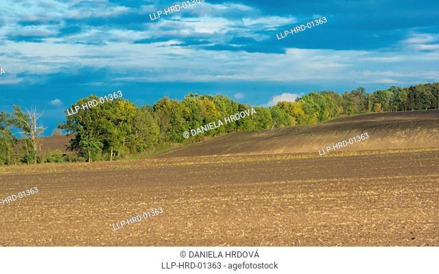 Field in Czech Republic, Europe