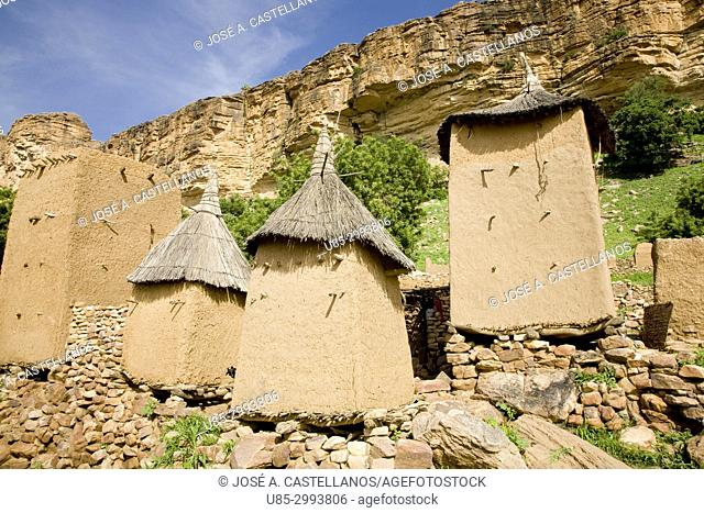 Dogon Country. Mali. Yabatalou village. Barns erected with wood and adobe. The walls of the Bandiagara escarpment can be seen in background