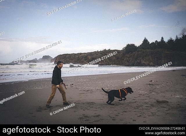 A man is playing with a dog on the Californian beach