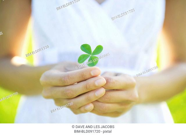 Hispanic woman holding four-leaf clover