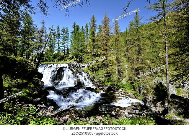 Dreamy waterfall Fontcouverte in the valley of the river Clarée; wide angle and the surrounding larch wood, Hautes-Alpes, French Alps, France