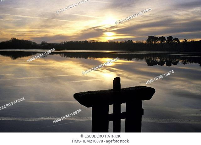 France, Loir et Cher, Sologne, Marcilly en Gault, sunrise over a pond with a sluice gate in the foreground