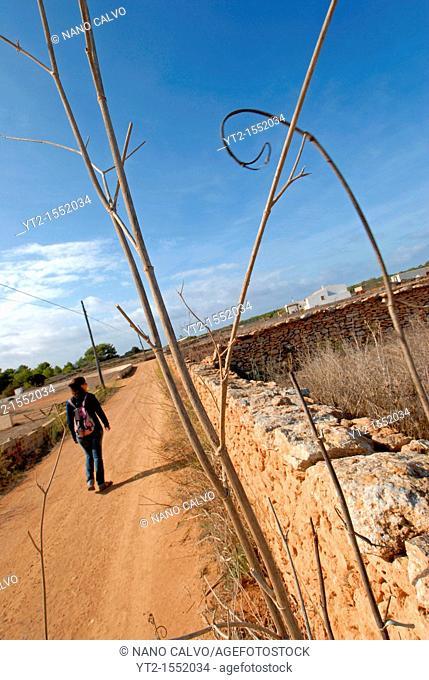 Woman walking in the fields of Formentera