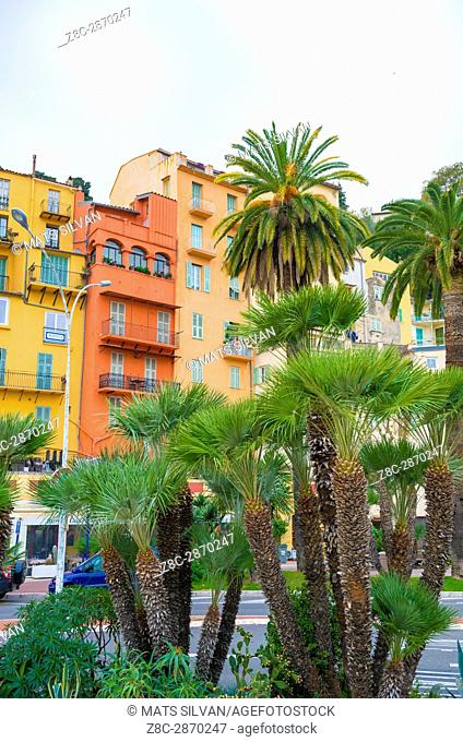 Old Buildings and Palm Trees in City of Menton in Provence-Alpes-Côte d'Azur, France