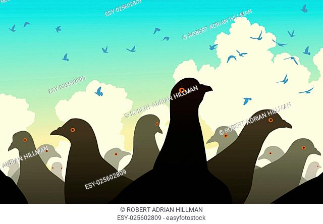 Editable vector illustration of pigeons watching other birds flying