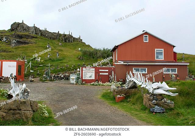 Iceland Djupivogur eccentic museum with Minke whale bones and selling odd souvenirs in Eastern Iceland