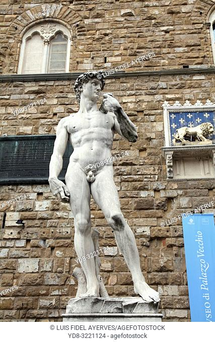Italy, Tuscany, Florence, Statue of David