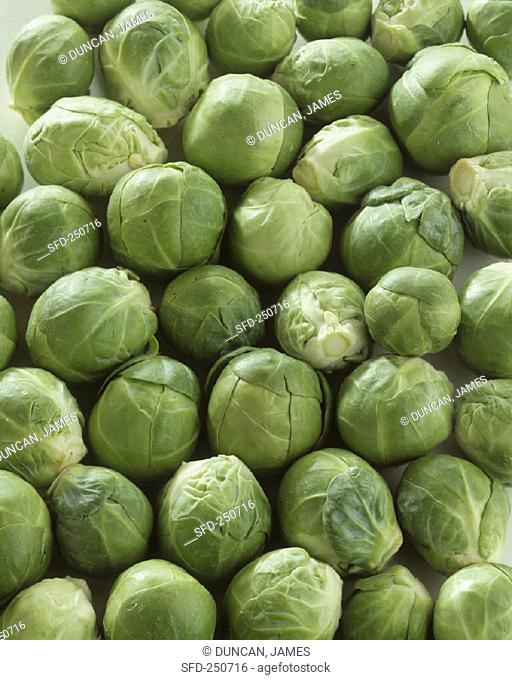 Brussels Sprouts (Full Frame)