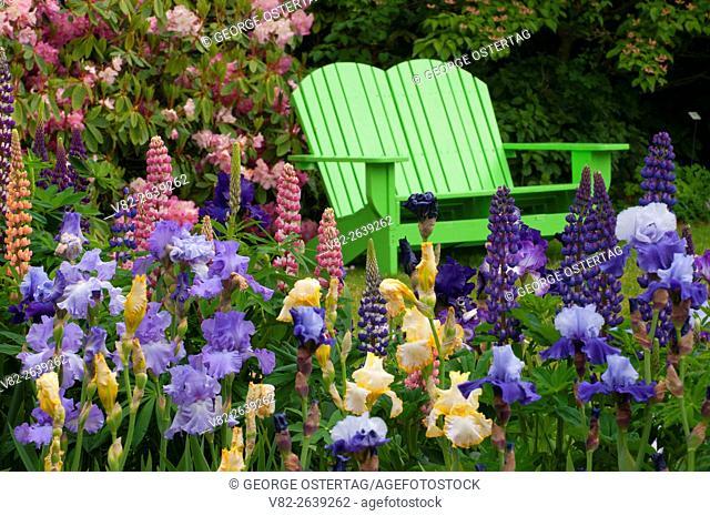 Display garden bench, Schreiners Iris Gardens, Keizer, Oregon