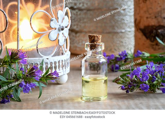 A bottle of essential oil with fresh blooming hyssop and a candle