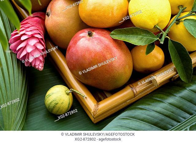 A basket of ripe tropical fruits: lemons, mangoes and tangerines