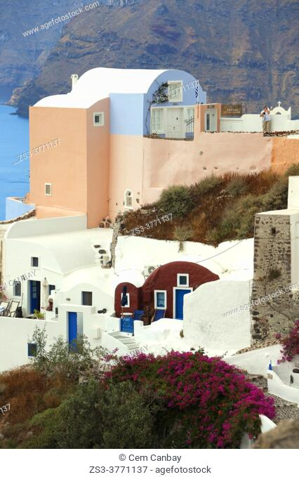Traditional houses in Oia village, Santorini Island, Cyclades Islands, Greek Islands, Greece, Europe