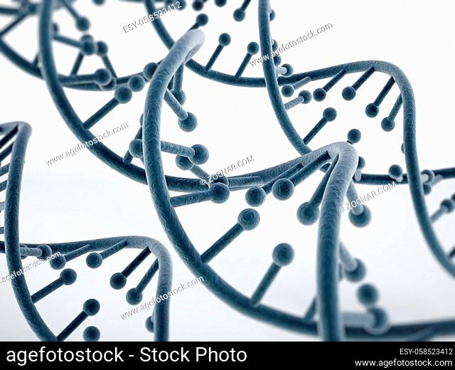 DNA strands isolated on white