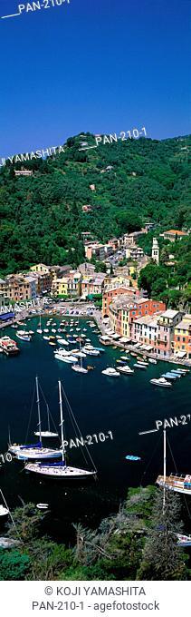 Yachts on Italian Riviera, Italy