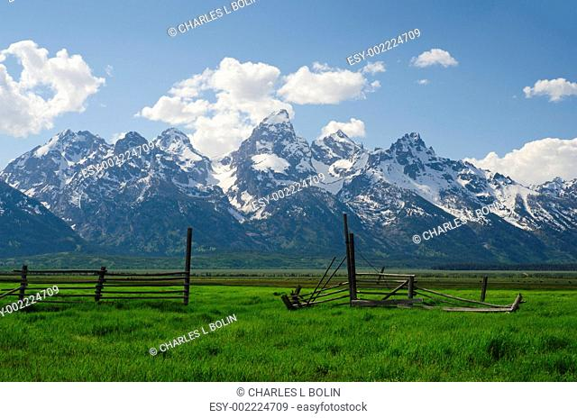 Old fence and the Teton Mountain Range in early summer, Grand Teton National Park, Teton County, Wyoming, USA