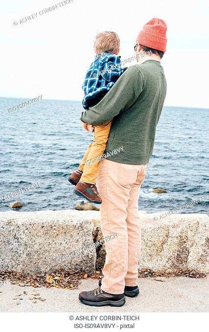 Father holding son beside lake, rear view