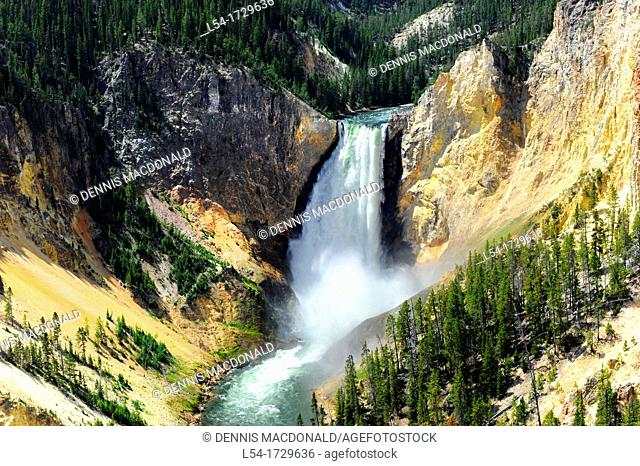 Lower Falls Yellowstone River National Park Wyoming WY United States