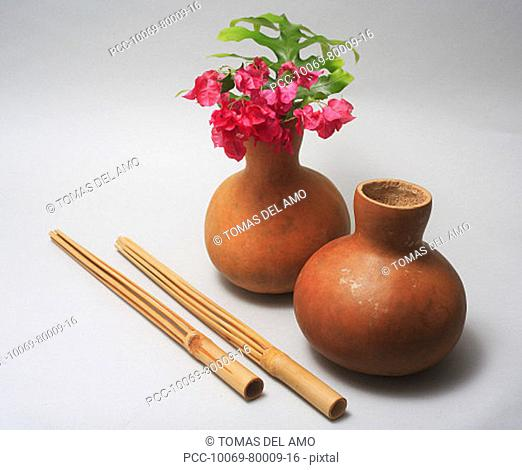 Studio shot of hula implements, bamboo sticks and gourd with flowers