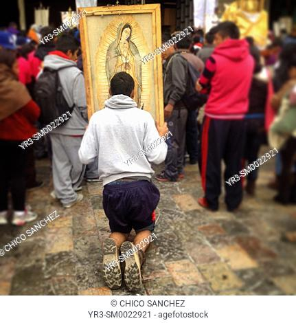A pilgrim kneeling carries an image of Our Lady of Guadalupe during the annual pilgrimage to the Basilica of Guadalupe in Mexico City, Mexico