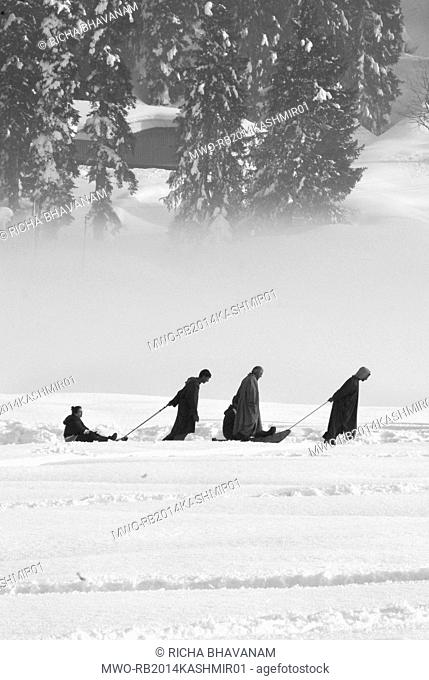 Kashmir, India. Snow sledges are a popular tourist attraction in Gulmarg, Kashmir. Many tourists visit Kashmir to experience the snow and enjoy snow sports