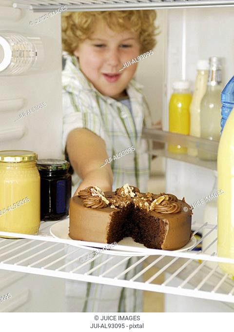 Boy taking cake out of refrigerator