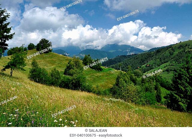 Beautiful green, vibrant mountains