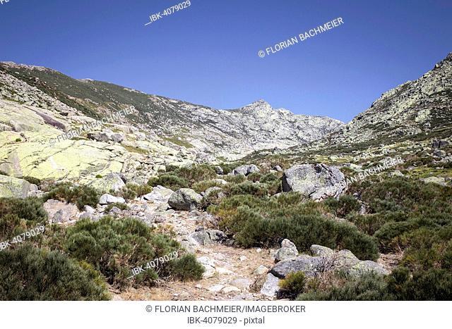 Sierra de Gredos, hiking trail, Ávila, Castile and León, Spain