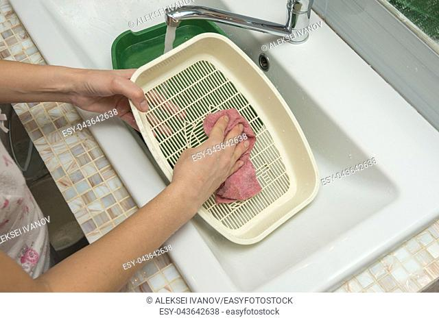 A girl washes a cat tray grate in the sink