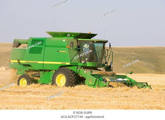 Combining Grain. A farmer might use his own combine or contract a custom combining operator to do his crop for him. When the grain has been swathed into wind...