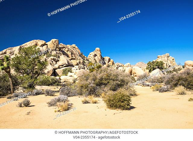 Large boulders and desert landscape in the Joshua Tree National Park, California, USA