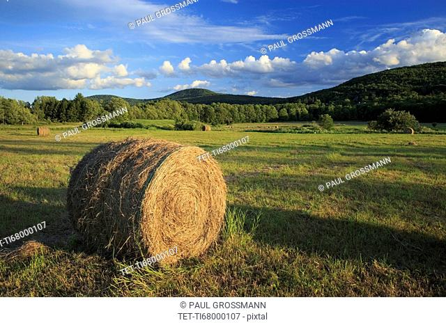 Hay bale in field in agricultural landscape