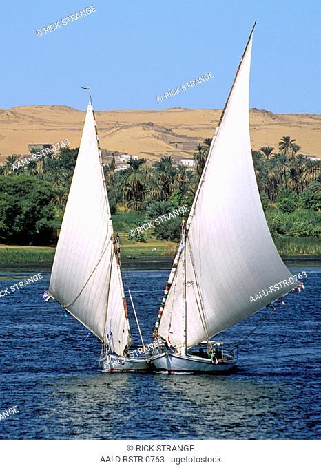 Feluccas on the Nile, Aswan, Upper Egypt