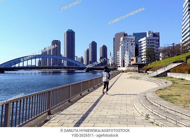 Promenade on the right bank of the Sumida River, Eitai bridge and Chuo-Ohashi bridge in far background, Nihonbashi-Hakozaki-cho, Chuo-ku, ChŠ«Š, Tokyo, Japan